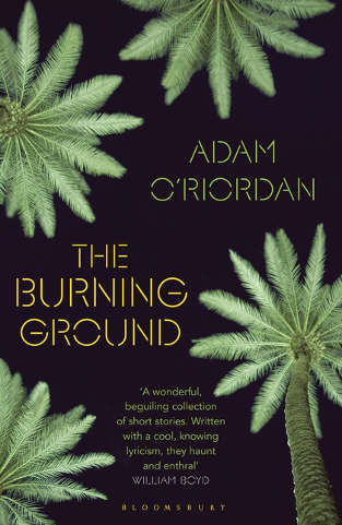 Cover image for The Burning Ground UK edition
